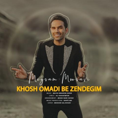 دانلود آهنگ جدید میثم موسوی خوش اومدی به زندگیم