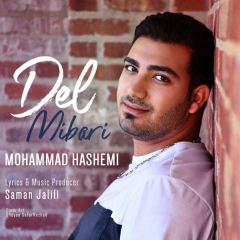 دانلود آهنگ جدید محمد هاشمی دل میبری