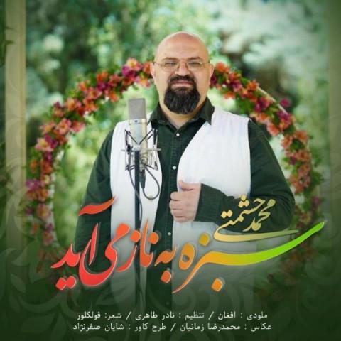 دانلود آهنگ جدید محمد حشمتی سبزه به ناز می آید