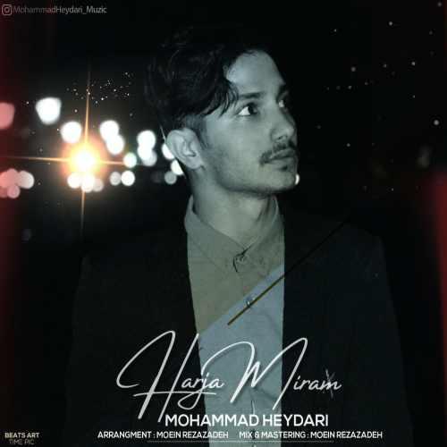 دانلود آهنگ جدید محمد حیدری هرجا میرم