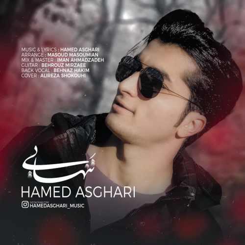 دانلود آهنگ جدید حامد اصغری تنهایی