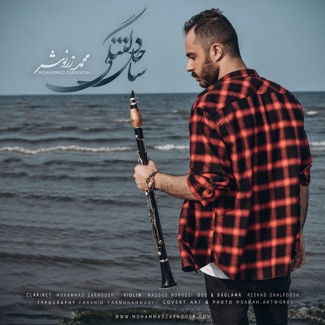 دانلود آهنگ جدید محمد زرنوش ساحل دلتنگی